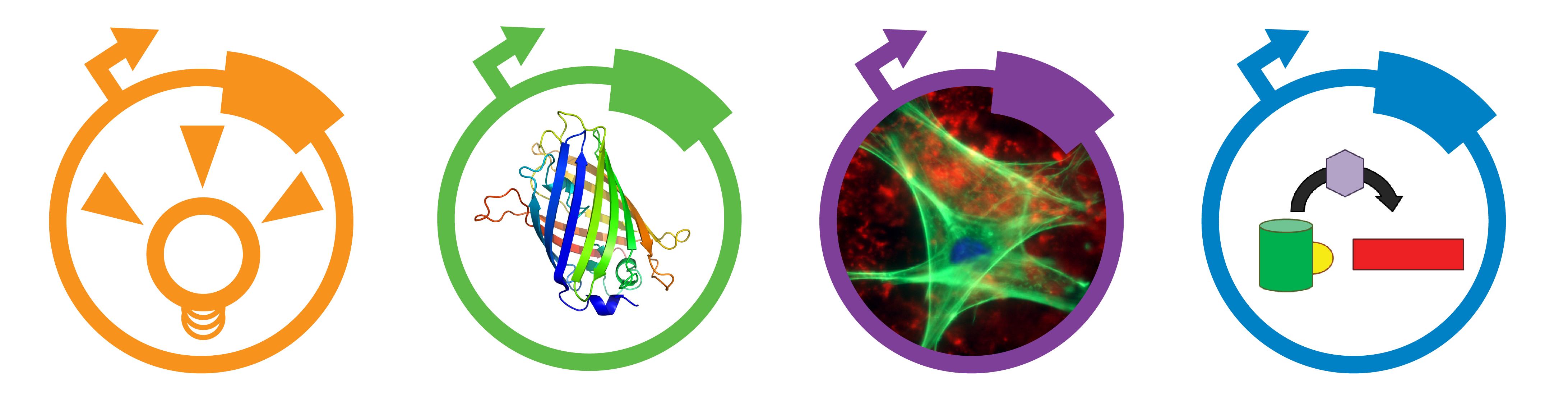 fluorescentProtein eBook Image-01.png