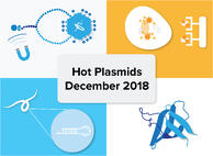 Hot-Plasmids