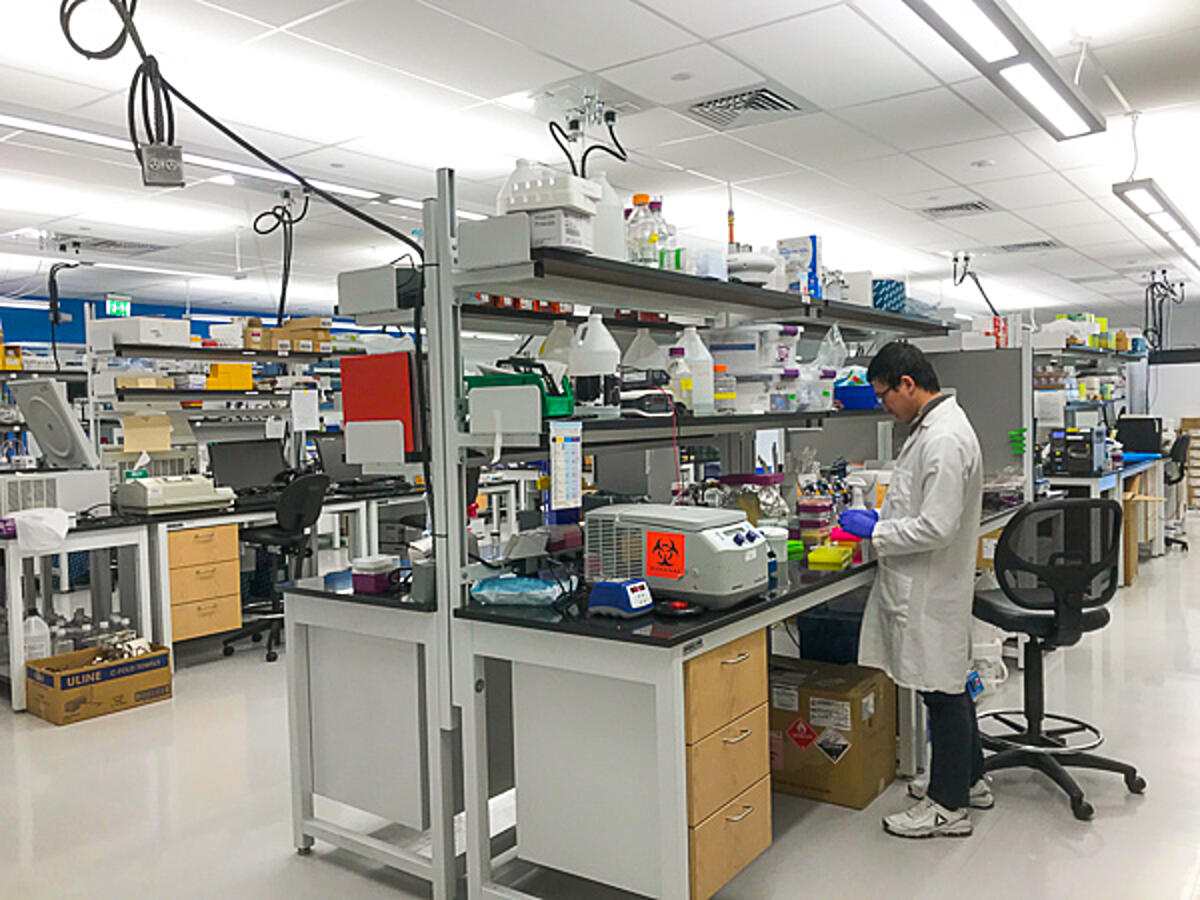 Scientist working at a bench in the lab at Addgene headquarters