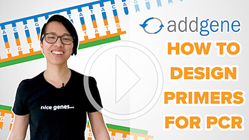 """Text that says """"Addgene How to Design Primers for PCR"""" with primers in the background and a play button"""