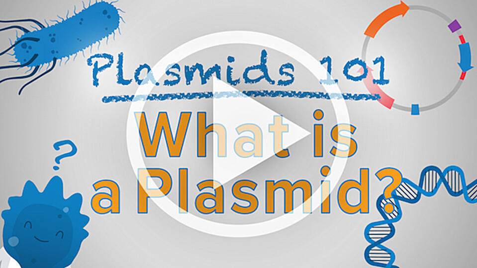 Plasmids 101 What is a Plasmid video thumbnail with play button