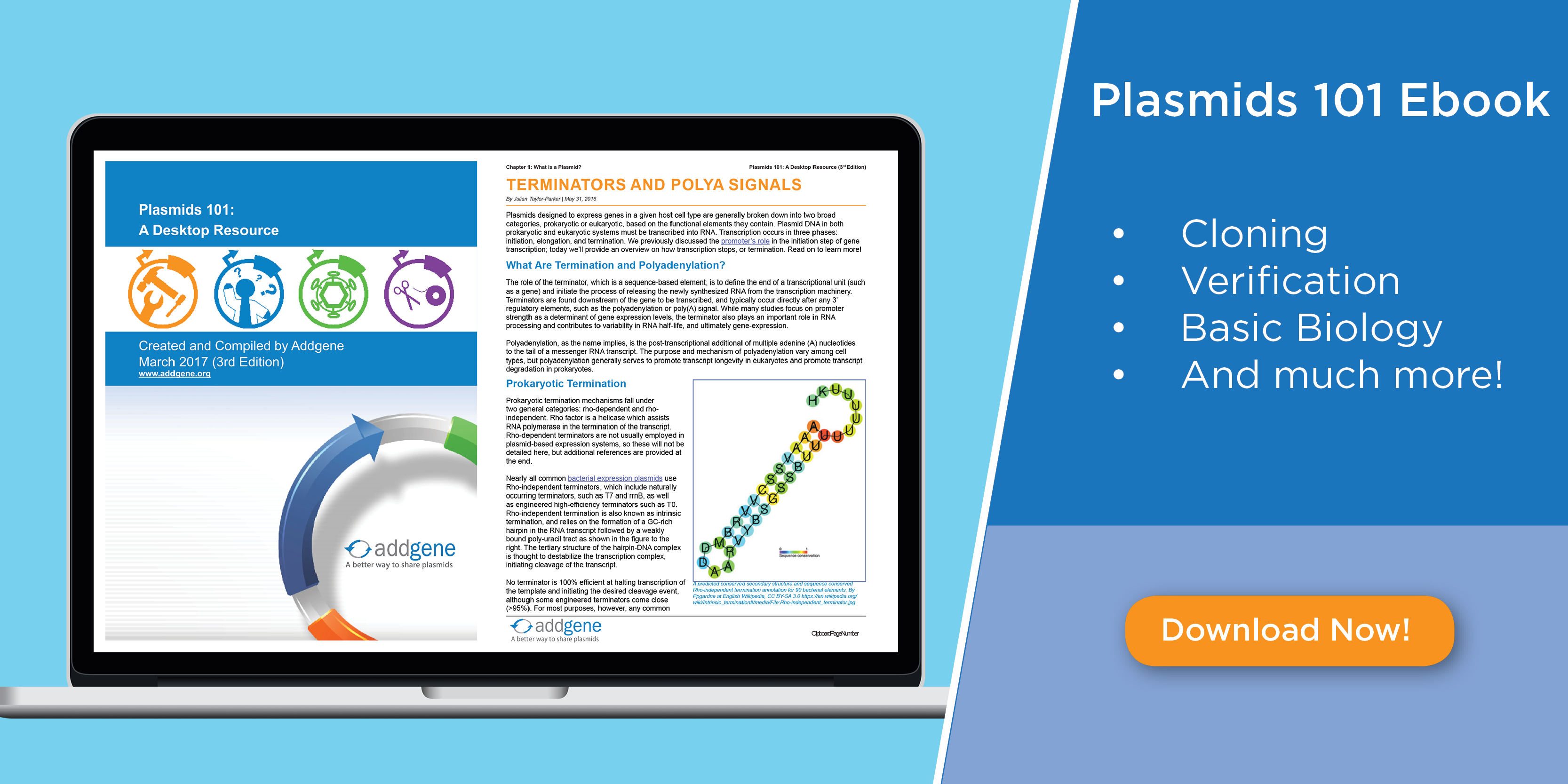 Plasmids 101 eBook